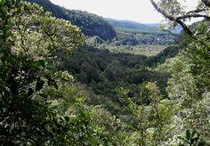 View from above Tarawera Falls, NZ