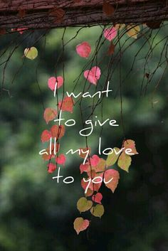 I want to give all my love to you