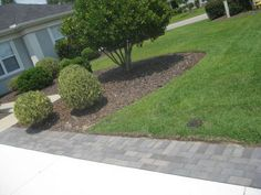 Really like this idea of driveway paver extensions... And I would like to incorporate them going to my back gate too (for bringing out the garbage/recycle bins) http://porchandpavers.com/sites/default/files/extension%2520driveway.jpg