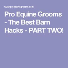 Pro Equine Grooms - The Best Barn Hacks - PART TWO!