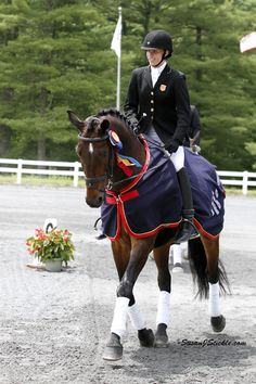 2012 U.S. Para-dressage Champion Rebecca Hart on Lord Luger. Good luck in London!