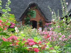 Thatched cottage in an English garden                                                                                                                                                                                 Mehr
