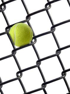 Tennis Ball in Fence Sports Photographic Print - 46 x 61 cm 645fc984b10bd