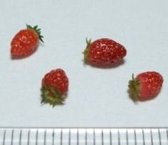 how to: strawberries