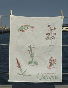 me: Edible Invasive Species Of Ontario Teatowel (Kid Icarus in Toronto)