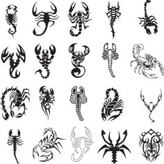 Different scorpion tattoo ideas