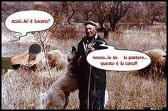 Lei è Lucano?   BESTI.it - immagini divertenti, foto, barzellette, video