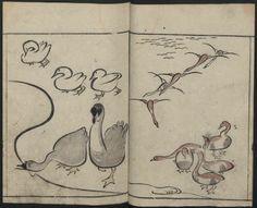 Abbreviated Drawing Styles for Birds and Animals (Chōjū ryakuga shiki 鳥獣略画式). Japanese Illustrated Books. The Metropolitan Museum of Art, New York. Department of Asian Art (b17940436) #birds #illustrations