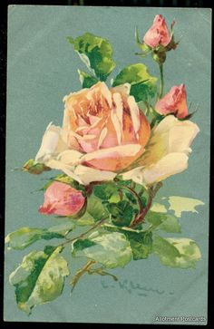 Antique Klein postcard of a rose and buds.