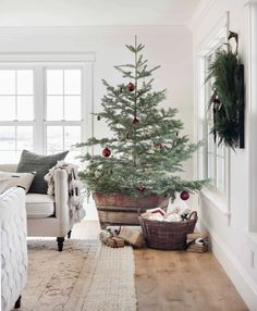 Best Real Christmas Tree, Christmas Tree Guide, Types Of Christmas Trees, Merry Christmas, Flocked Christmas Trees, Christmas Home, Christmas Ideas, Nordic Christmas, Natural Christmas