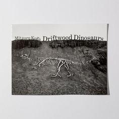 Driftwood Dinosaurs by Mitsuru Koga Art Book Fair, Book Art, Japanese Artists, Utrecht, Driftwood, Tokyo, Tapestry, Dinosaurs, Books