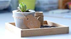 2 em 1    Além de servir, as bandejas são ideais para dispor plantinhas e até aquele décor especial. Conheça o charme dos modelos em madeira dessa campanha!