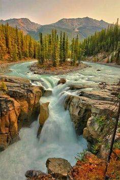 Sunwapta Falls is a waterfall of the Sunwapta River located in Jasper National Park, Canada. There are actually two falls, a lower and an upper one. The one most people see is the upper falls as access is easy. The lower falls are a short distance away. Places Around The World, The Places Youll Go, Places To See, Around The Worlds, Beautiful Waterfalls, Beautiful Landscapes, Parc National, Jasper National Park, Canada National Parks