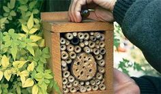 DIY bug box for insects. Give nature a helping hand within your garden. It' the perfect habitat for beneficial insects such as spiders, ladybirds, lacewings and bees. Outdoor Projects, Garden Projects, Projects For Kids, Wood Projects, Garden Ideas, Outdoor Ideas, Outdoor Stuff, Backyard Projects, Outdoor Decor