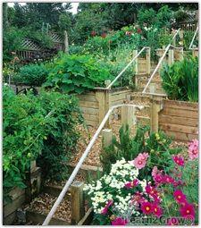 Hillside Gardening Landscaping Garden Sloped Veg Terrace