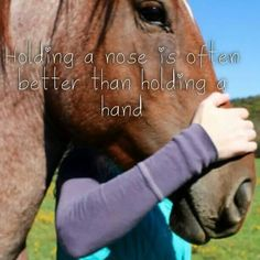 I LOVE HORSES T-shirts, hoodies, girl tees, pony jewelry,. The Effective Pictures We Offer You About Horse Riding Photography children A quality picture Cowgirl And Horse, My Horse, Horse Girl, Inspirational Horse Quotes, Horse Meme, Horse Humor, Horse Riding Quotes, Equestrian Quotes, Country Girl Quotes