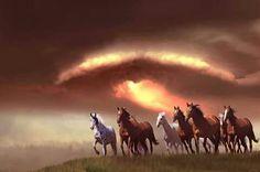 Amo a los caballos!!