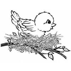 Bird In Nest Printable Coloring Page, free to download and print.
