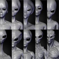Realistic Aliens Sculpts Full Pack 3D Model .max .c4d .obj .3ds .fbx .lwo .stl @3DExport.com by supergamecharacters