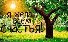 Улыбнись новому дню и он обязательно станет для тебя позитивным! #улыбка#день#фотография#любовь#успех#настроение