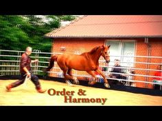 Hempfling - Order & Harmony in Minutes - An Educational Documentary - YouTube