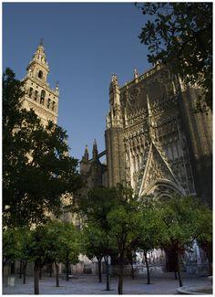 Catedral de #Sevilla