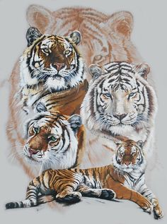 Trademark Fine Art 'Czar' Oil Painting Print on Wrapped Canvas Size: H x W Big Cat Tattoo, Tiger Tattoo, Big Cats Art, Cat Art, Bird Drawings, Animal Drawings, Wallpaper Tigre, Tiger Artwork, Tiger Pictures