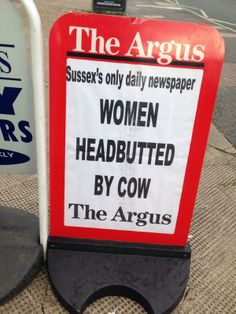 The local newspaper for Brighton Hove is The Argus. One of their headlines: 'Women Headbutted By Cow'