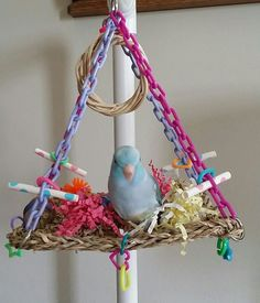 """7 x 7"""" or 10 x 10"""" Sea Grass Mat with plastic chain for hanging and lots of fun things to play with like Mini links, charms, paper straws, small birdie bagels, & colored wood. This is one of my parrot"""