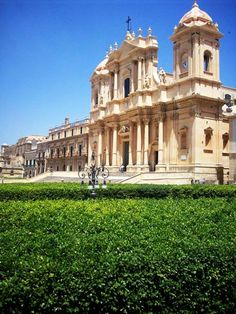 Above the trees, Cathedral in Noto, Sicily Copyright: Federico Giardina