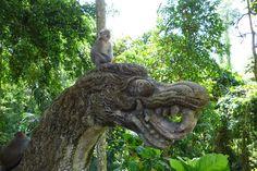 Funky Monkey Bali 2014