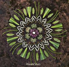 Voice of Nature - Amazing mandalas by Mandal'ana's