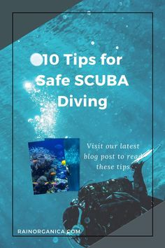 If you're new to diving or it's just been awhile, check out these tips for staying safe while diving. #scuba #divingsafely Camping For Beginners, Camping Tricks, Camping Guide, Camping Checklist, First Time Camping, Camping With Kids, Scuba Certification, Scuba Diving Courses