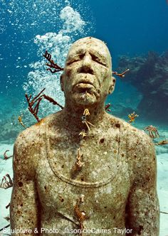 the man on fire / Jason deCaires Taylor / part of an underwater sculpture park intended to become a coral reef