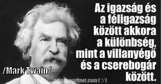 Mark Twain, Einstein
