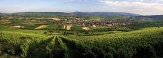 Westhoffen, Bas-Rhin en été © ZVARDON Conseil Vins Alsace
