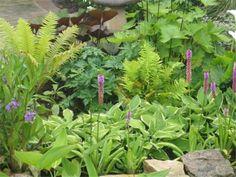 Estas composiciones son preciosas, cualquier jardín aumentará su belleza notablemente. ¡Apunta!