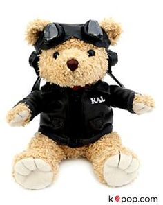K2POP - TEADY BEAR KOREAN AIR PILOT DOLL Korean Airlines, Teady Bear, Pilot, Animation, Dolls, Cute, Animals, Filters, Bears