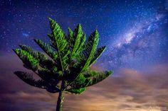 Pacific Nights by andyhutchinson.deviantart.com on @deviantART