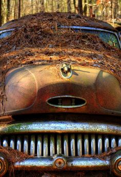 Pine Straw On Buick is a photograph by Greg Mimbs. Color photograph of a rusty old Buick covered in pine straw. Located in a Georgia junk yard, this Buick has seen it's better days as an automobile, but may be in it's prime as a piece of art. Source fineartamerica.com