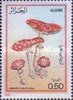 [Mushrooms, type UJ]