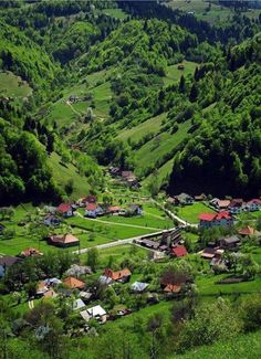 Moeciu near Brasov in summer #romania #beautifulromania #traveleurope #places_wow #placestovisit #placestogo #placestogothingstodo #travelinspiration #favouriteplacesspaces #amazingplaces #traveldestinations #aroundtheworld #wanderlust #voyage #transylvania #brasov#