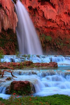Havasu Falls,  Grand Canyon National Park, Arizona, USA. Havasu Falls (Havasupai: Havasuw Hagjahgeevma) is a waterfall in the Grand Canyon located 1½ miles (2.4 km) from Supai, Arizona, USA. It is arguably the most famous and most visited of all the falls on Havasu Creek and consists of one main chute that drops over a 90-foot (27 m) to 100-foot (30 m) vertical cliff into a large pool