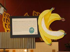 2007 bananas #markers #foamcore #dayjob #graphicjulesNET