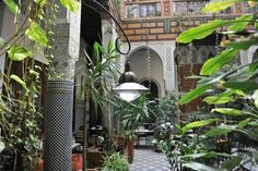 Riad Al Bartal: fassie cuisine, highly recommended