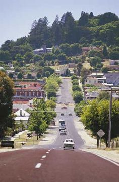 Driving into stunning Daylesford with the Wombat Hill Gardens towering above the town