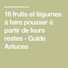 16 fruits et légumes à faire pousser à partir de leurs restes - Guide Astuces