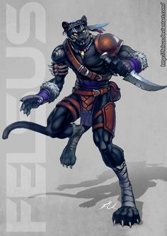 Male Phanter Ranger by *Felsus on deviantART