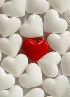 One Red Heart + Bunches White Hearts = Love I Love Heart, Happy Heart, Your Heart, My Love, Lonely Heart, As You Like, Just For You, Heart Images, Heart Pics