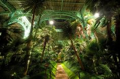 The Royal Greenhouses of Laeken (Dutch: Koninklijke Serres van Laken, French: Serres Royales de Laeken), are a vast complex of monumental heated greenhouses in the park of the Royal Palace of Laeken in the north of Brussels